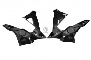 Carbon Seitenverkleidung für BMW S1000R 2014