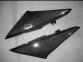 Carbon Seitenverkleidung für Honda CBR 600RR 02-03