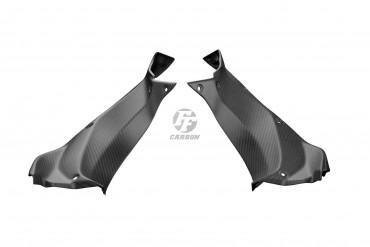 Carbon Seitenverkleidung für Kawasaki Ninja H2 SX / SXSE