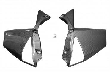 Carbon Seitenverkleidung für Kawasaki Z1000 2010-2013