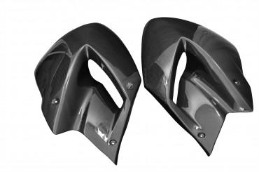 Carbon Seitenverkleidung für Yamaha TDM 900