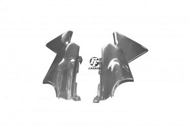 Carbon Seitenverkleidung für Yamaha TDR 250