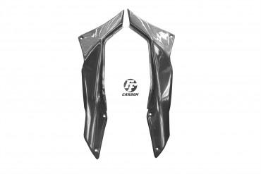 Carbon Seitenverkleidung unter Sitz für Ducati Multistrada 1200 / 1200S 2010-2014