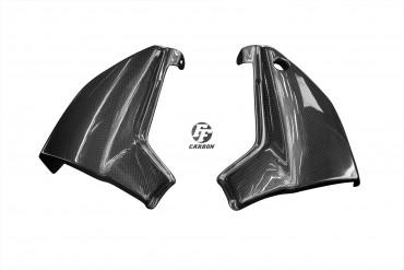 Carbon Seitenverkleidung unter Sitz für Kawasaki ZRX