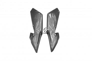 Carbon Seitenverkleidung unter Tank für MV Agusta F4 1000 2010-2013
