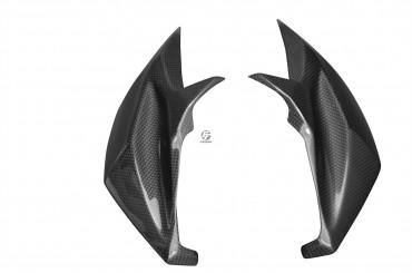 Carbon Frontverkleidung Seitenteile für Kawasaki Z800