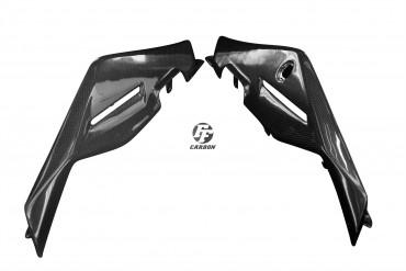 Carbon Sitz Abdeckung Seitenteile für Aprilia Tuono V4 Carbon+Fiberglas Leinwand Glossy Carbon+Fiberglas | Leinwand | Glossy