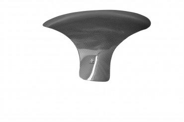 Carbon Tankpad für Honda CBR 954RR