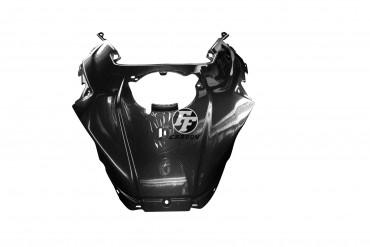 Carbon Tankverkleidung Mittelteil für BMW S1000XR