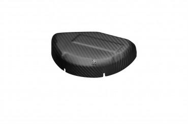 Carbon Trockenkupplungsschutz für Ducati Panigale 899 / 959 / 1199 / 1299