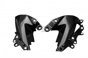 Carbon Untere Seitenverkleidung für Kawasaki ZX-6R 2009-2012