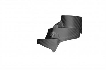 Carbon Verkleidungsteil Bremsflüssigkeitsbehälter für Aprilia Tuono V4