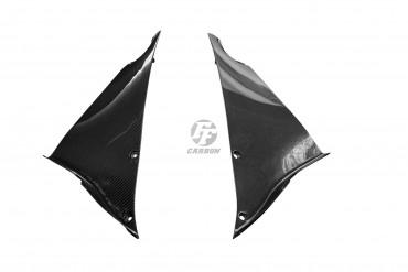 Carbon Verkleidungsteile für Kawasaki ZX 12 R 2002-2005