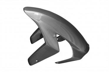 Carbon vorderes Schutzblech für Ducati 749 / 999