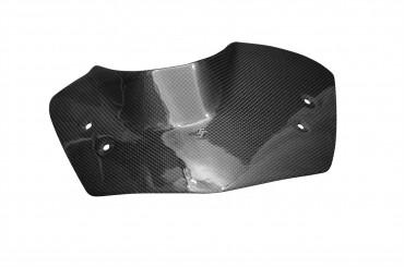 Carbon Windschild für BMW K 1200 R / K1300R
