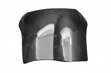 Carbon Windschild für Buell S1