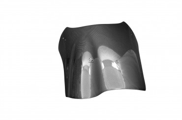 Carbon Windschild für Buell X1