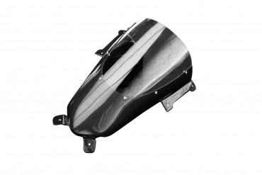 Carbon Windschutz für Ducati Panigale V4R