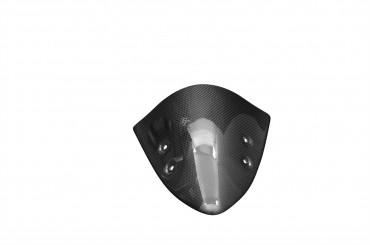 Carbon Windschutzscheibe für Kawasaki ER-6N 2012-2015