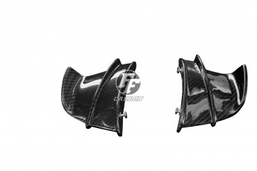 Carbon Winglets für BMW S 1000 R / S 1000 RR  100% Carbon Köper Glossy 100% Carbon | Köper | Glossy
