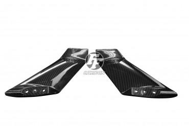 Carbon Winglets für Kawasaki Ninja H2 2015-2018