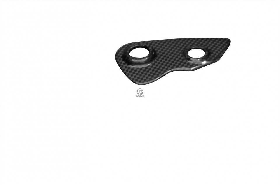 Buy Carbon parts for your Bike | Carbon Engine Cover (Left Side) for